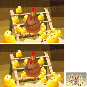 Vergleichsrätsel Hühnerstall