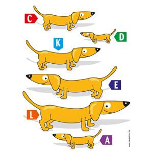 Wenn ihr die Hunde der Größe nach ordnet, dann ergeben die Buchstaben das gesuchte Lösungswort.