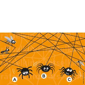 Labyrinth Irrgarten Spinnenfaden