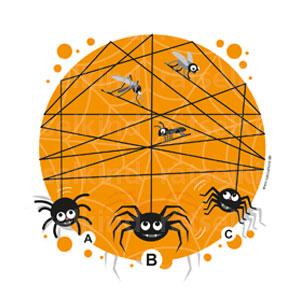 Spinnenfaden zuordnen
