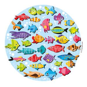 Fische zuordnen