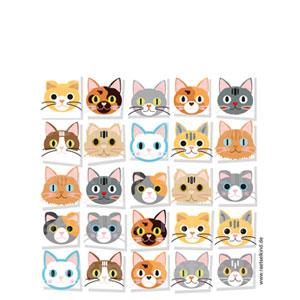 Was ist gleich? Katzenbilder zuordnen!