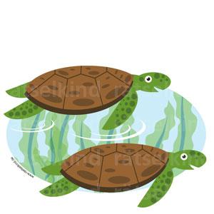 Fehlersuchbild Kinderrätsel Schilkröten vergleichen
